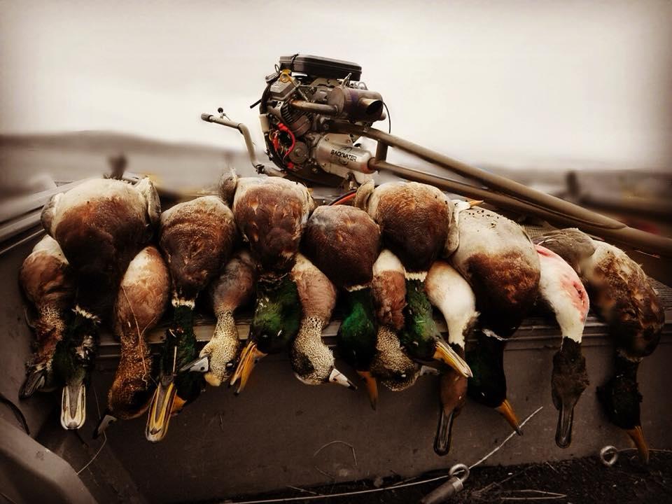 Cottonwood Custom Calls Redding Sportsman's Expo Hunting and Fishing Show