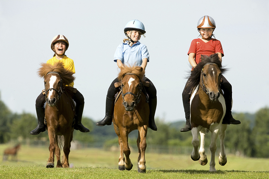 enfants-poney-epona.jpg