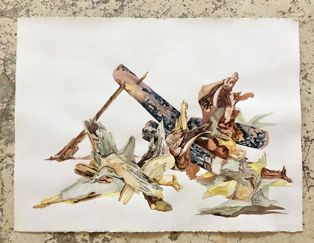 maderas de san pancho   35 x 50 cm