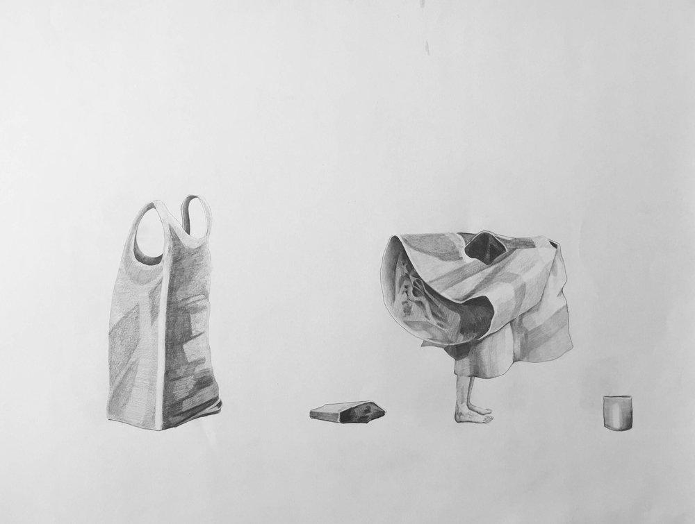 lápiz sobre papel. 4o x 50 cm