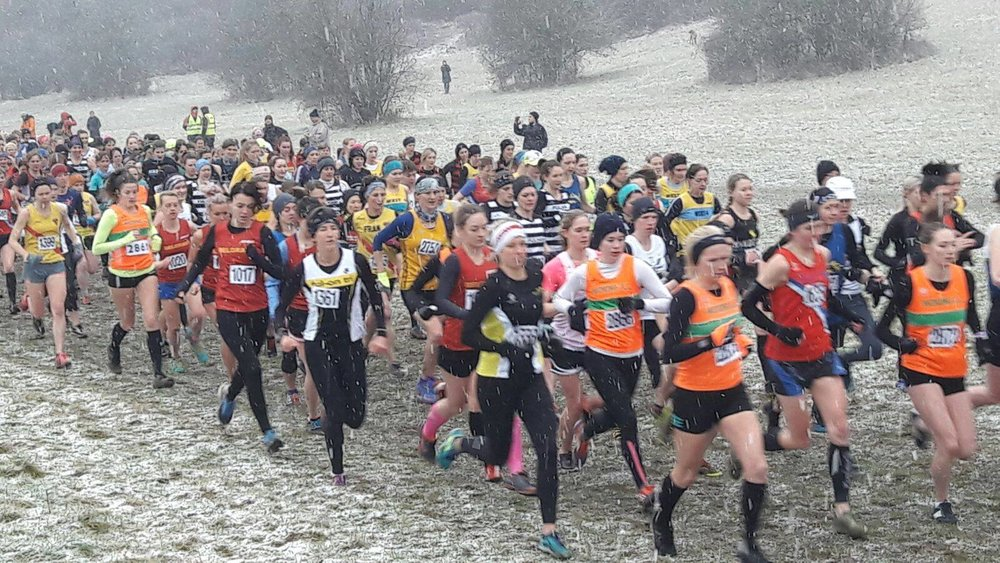 Group of women from different clubs in cross-country race in snowy field