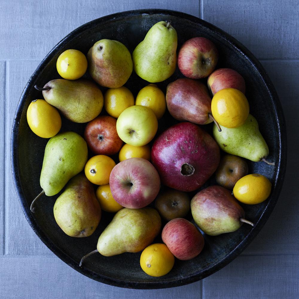 fruit v1.jpg