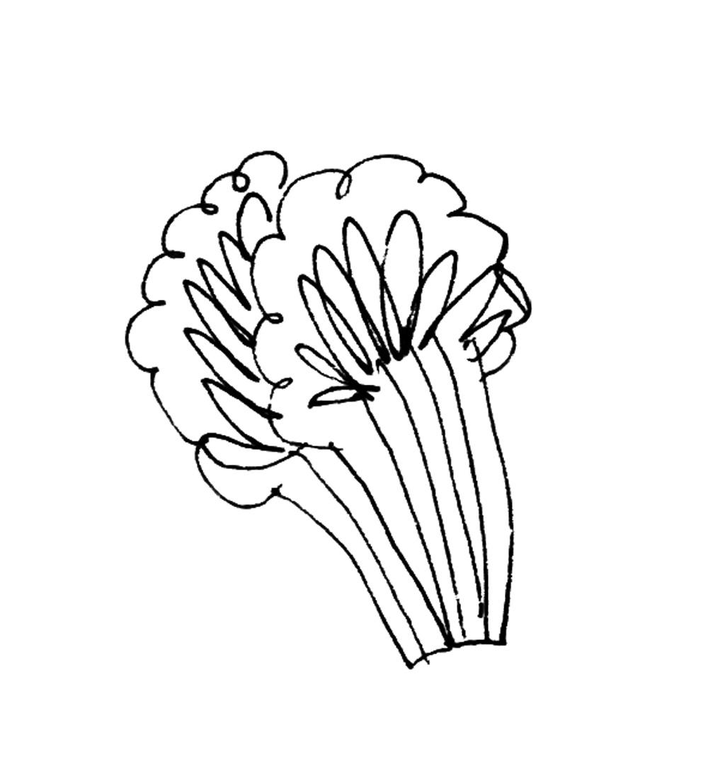 brocolli.jpg