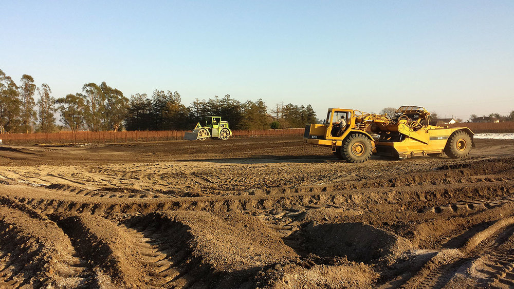 Rough grading has commenced on the site of the new Roche Winery