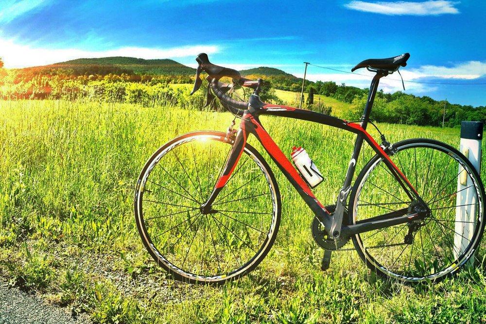 bicycle_brunch_2500w.jpg