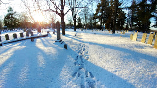 footprints c.jpg