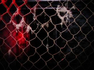 rusty gate.jpg