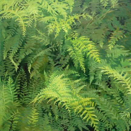 "Ferns  (sold)   Oil on Wood  8"" x 8"""