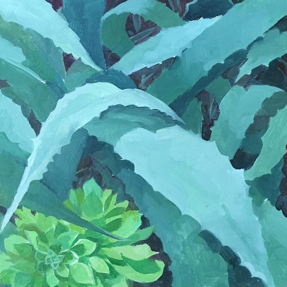 L.A. Succulent