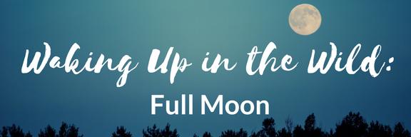wuw-full-moon-17.png
