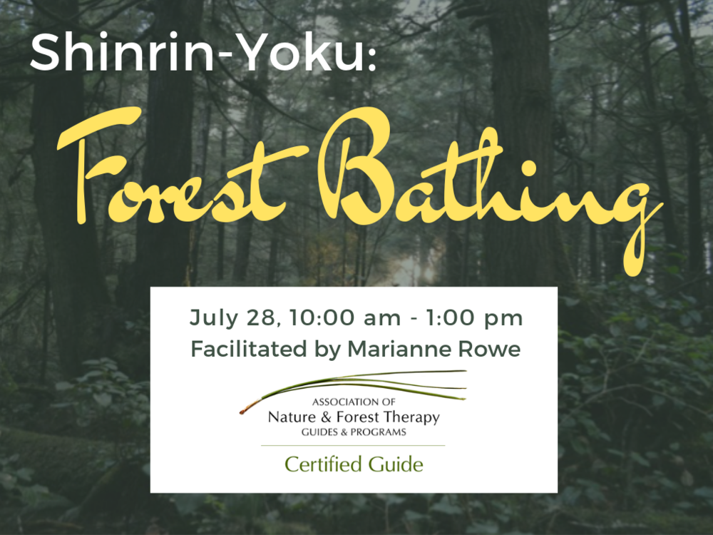 jul2019 forest bathing.png