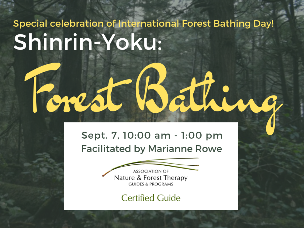 sept2019 forest bathing.png