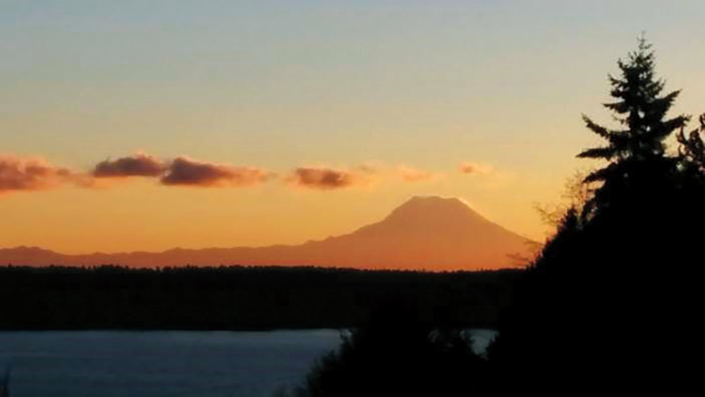 1974 Fowler home view - dawn.jpg