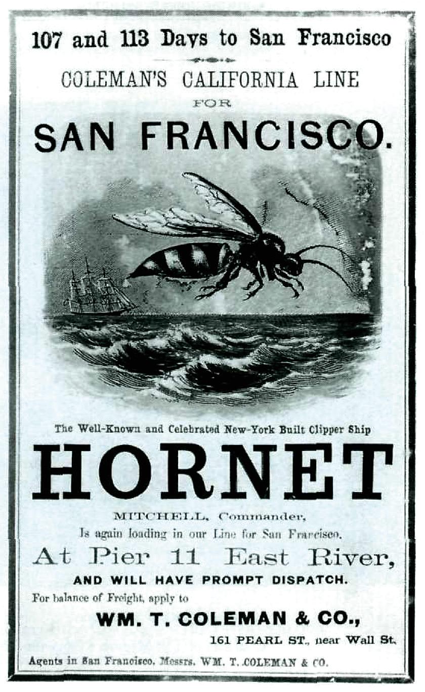 hornetposter.jpg