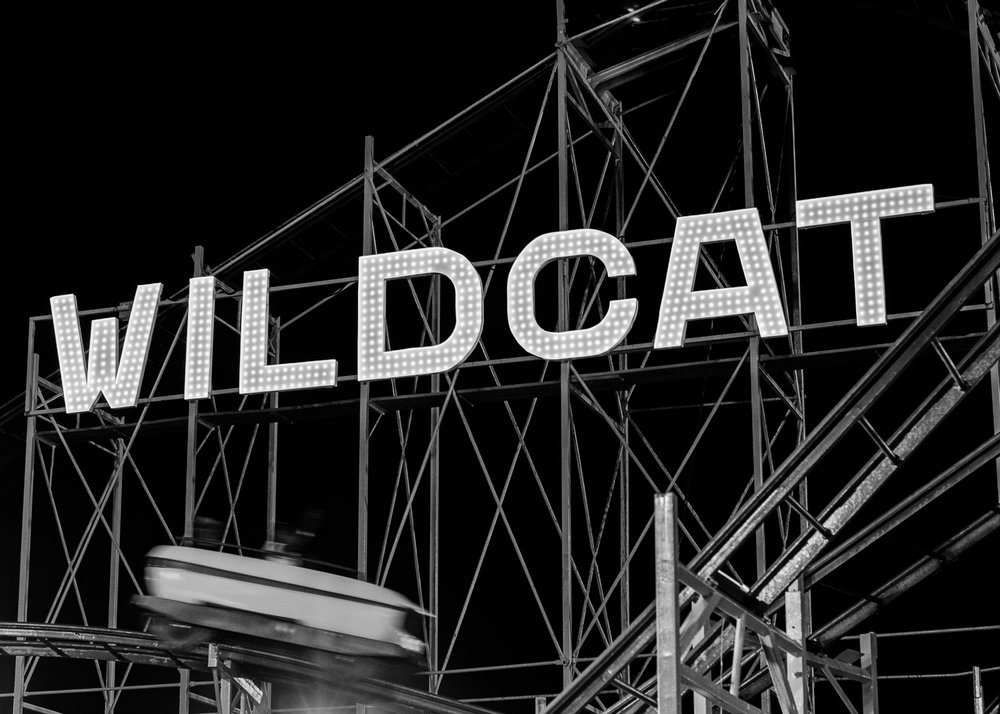 The Wildcat, Ocean City, Maryland