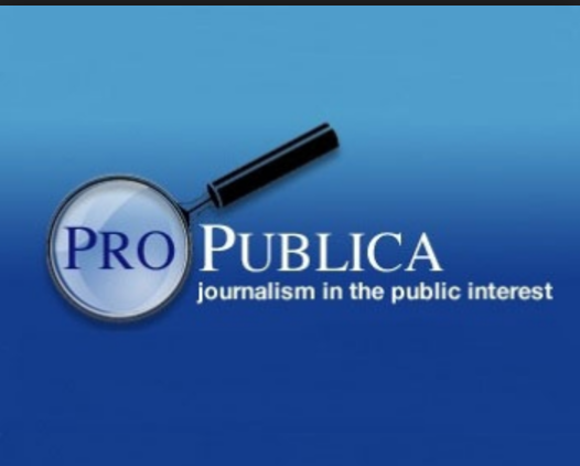 ProPublica logo.PNG