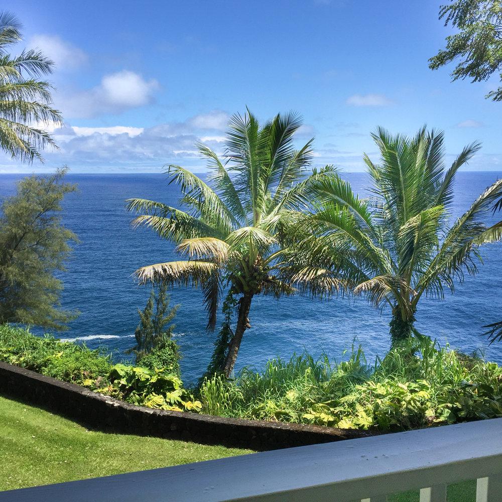 The Hawaiian VIews Suite at The Palms Cliff House Inn, Honomu, Hawaii (25 of 31).jpg
