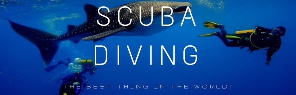 scuba-diving-on-facebook.jpg