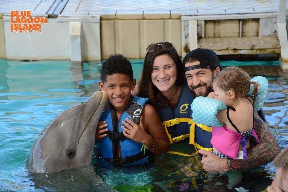 Dolphin Encounter Blue Lagoon Island