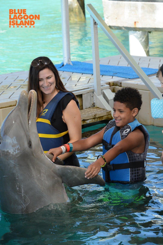 Dolphin Encounter bahamas