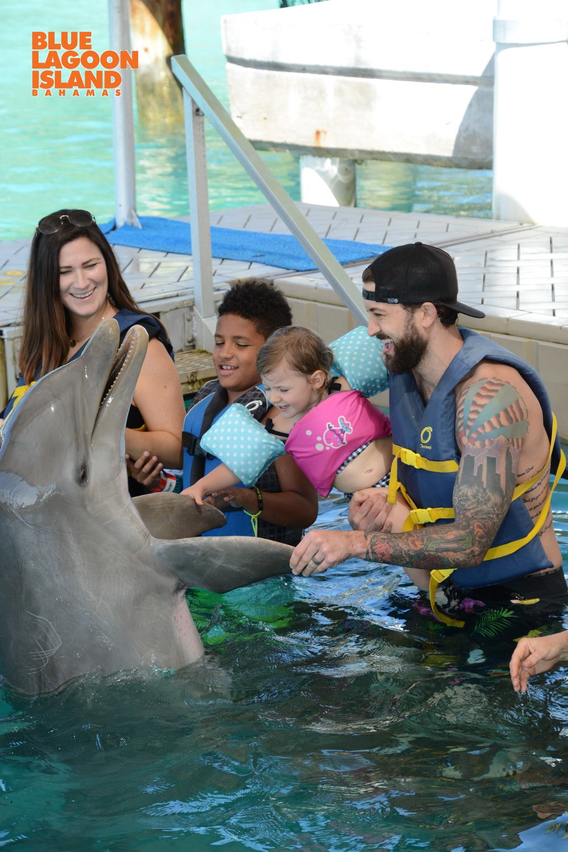 Dolphin Encounter Nassau New providence