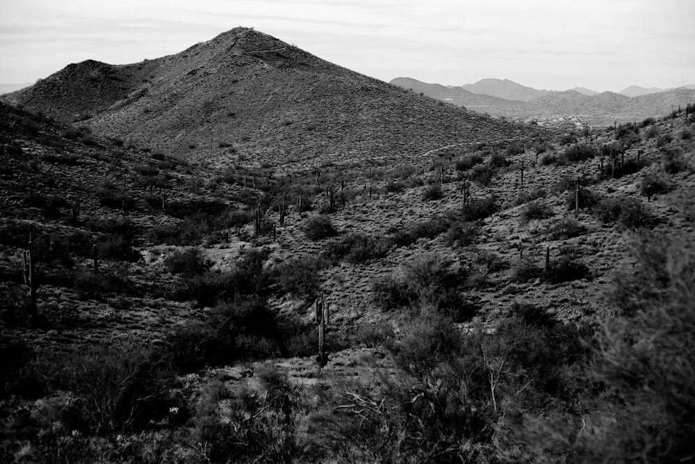 February 2018, Sonoran Desert Hike