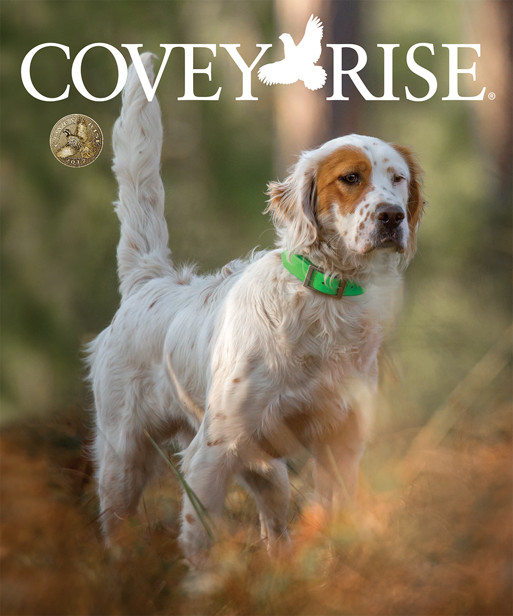 Covey Rise