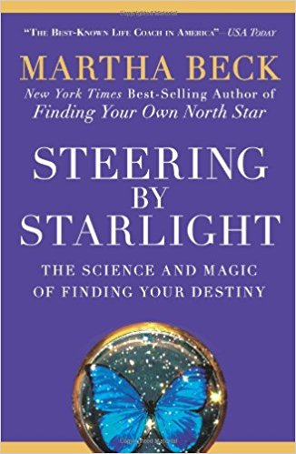 Steering by Starlight- The Science and Magic of Finding Your Destiny_Feminest 2017 book list.jpg