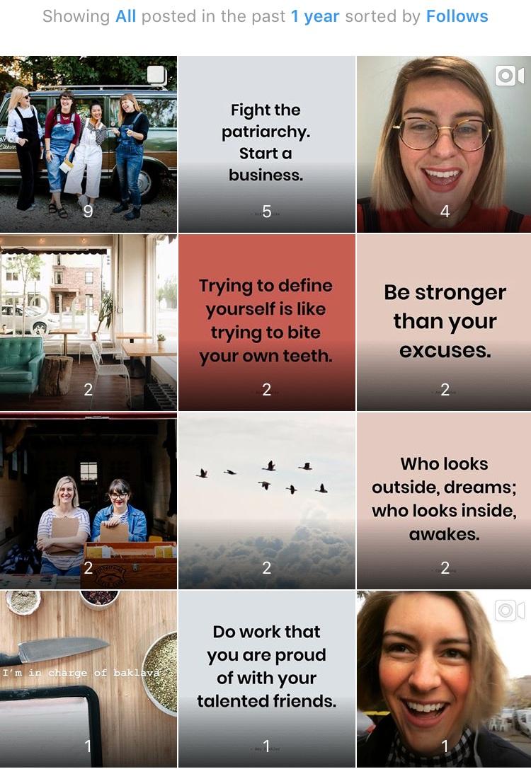 Feminest-Instagram+Insights-Follows.jpg