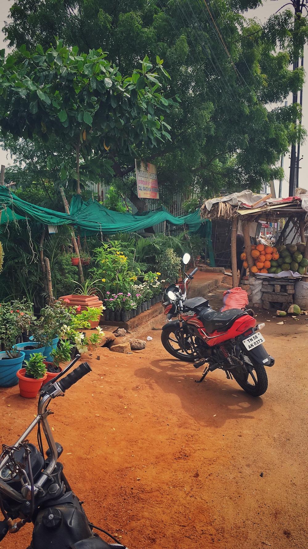 Pondicherry.jpg