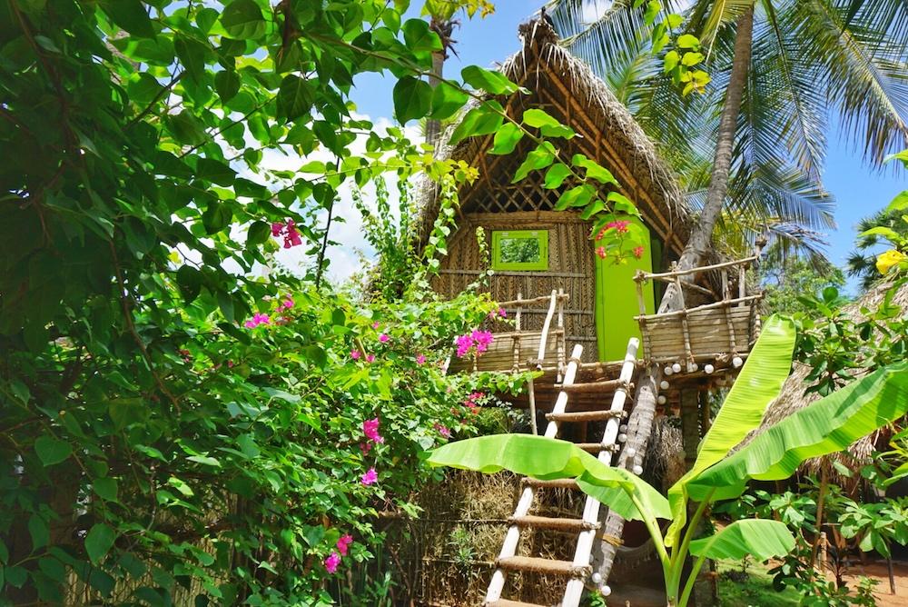 Tropical Hut.jpg