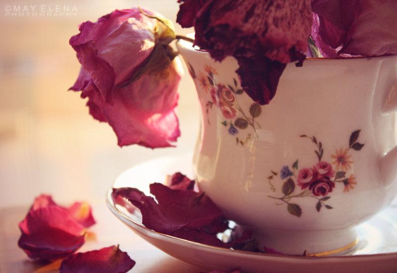 tea_time_by_annihilationx-d4f4jo1.jpg