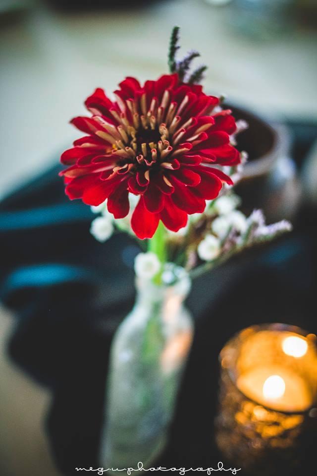 one flower.jpg