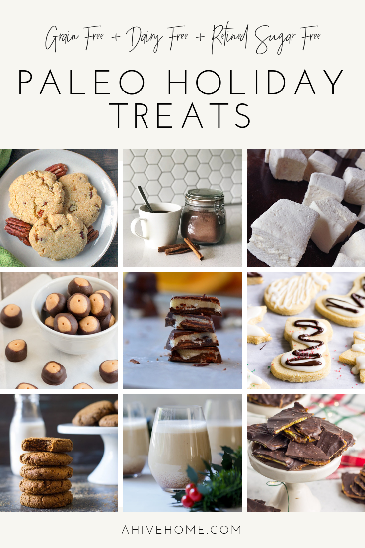 Paleo Holiday Treats1