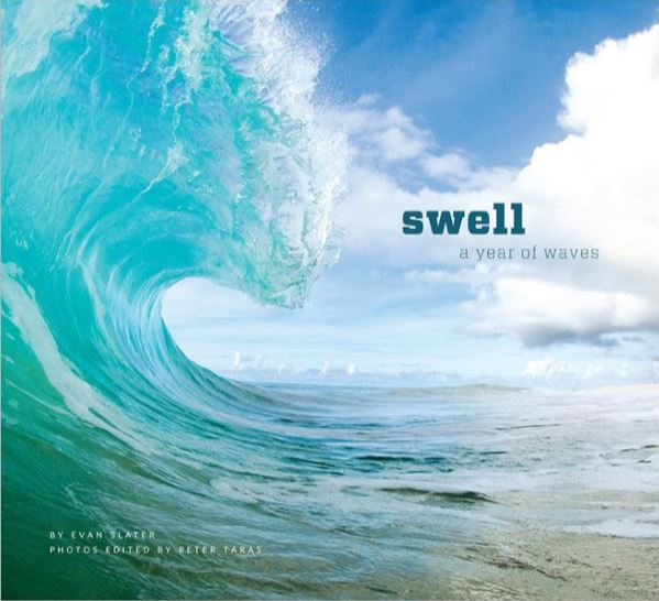 Swell: A Year Of Waves by Evan Slater - $24                   A wonderful book full of stunning pictures of the beach and waves from around the world
