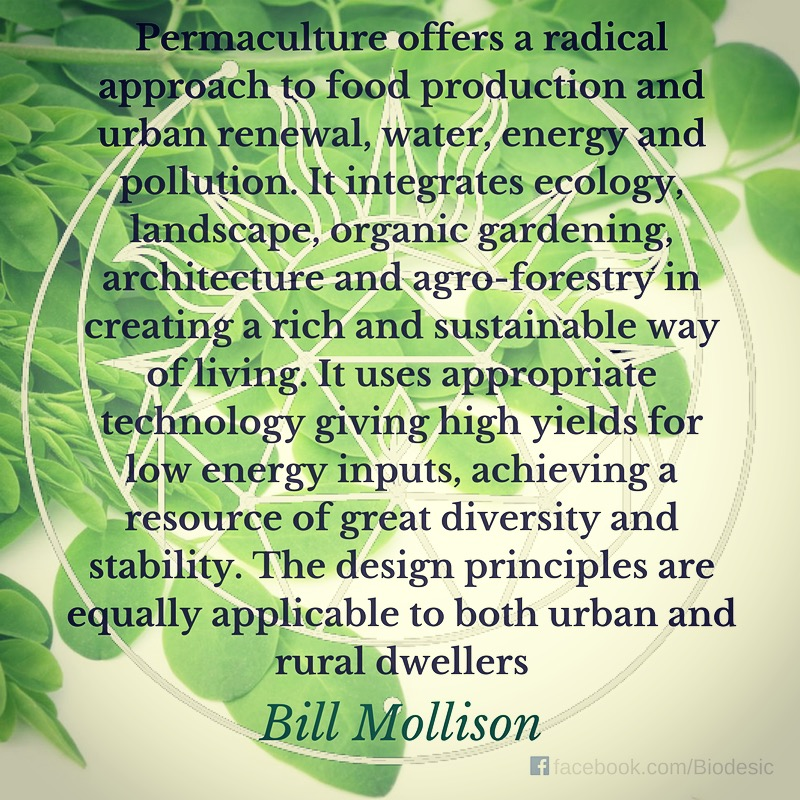 Bill Mollison on Permaculture(1).jpg