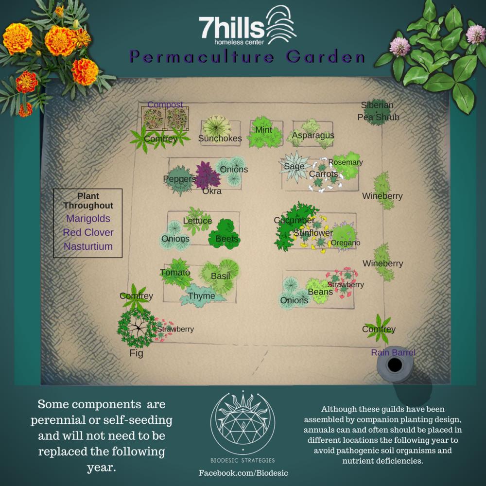 7hills (3).png