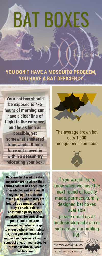 Bat boxes 1 glossy cardstock.png