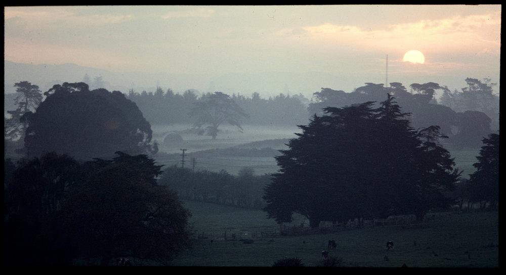 Evening scene, Wiri, 1971. Creator: Crook, Bruce Date: June 1971 Footprints 05610