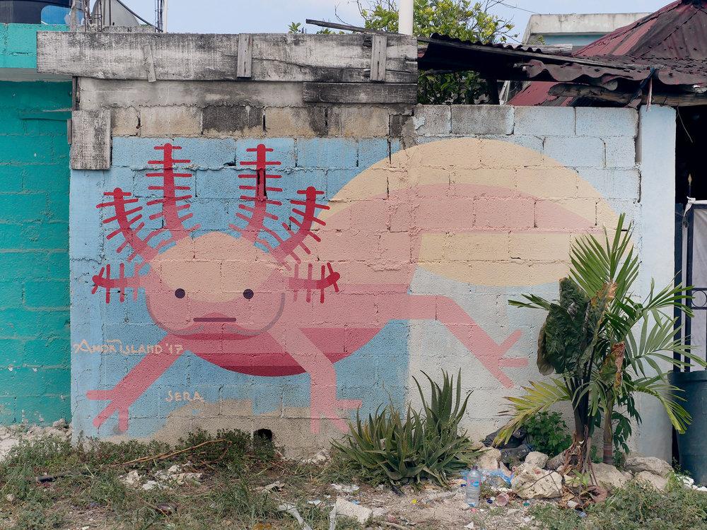 Tulum, Mexico 2017 'Axolotl'