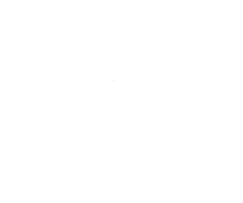 Tiger1shirt.png