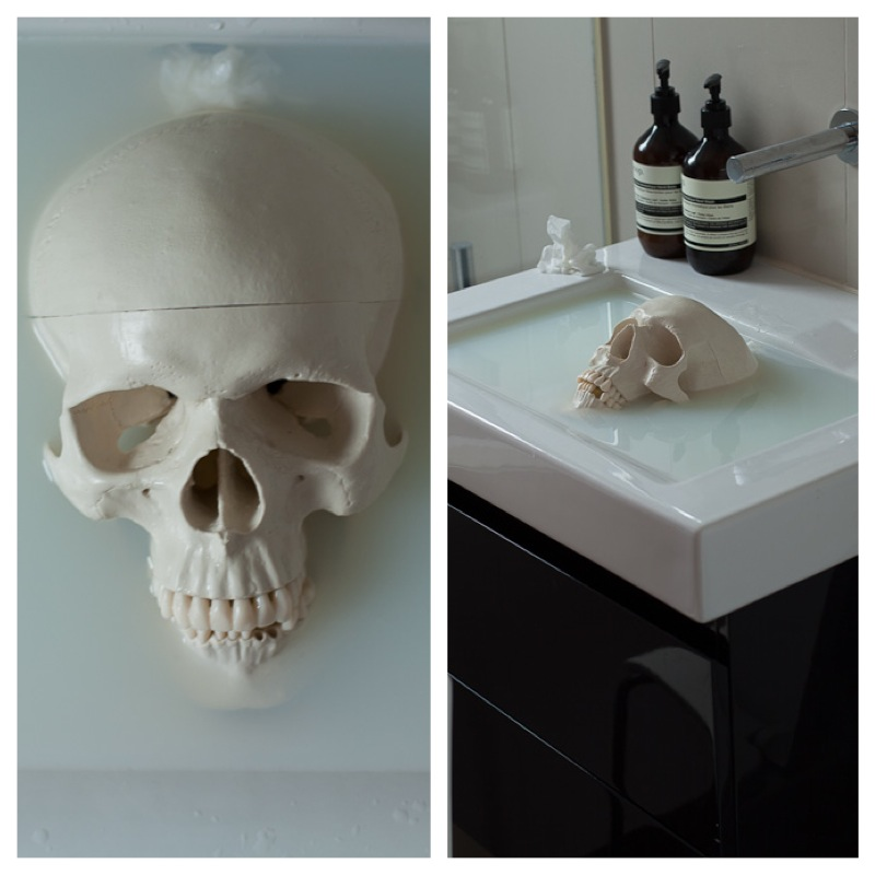 Skull in the sink filled with milk and water.