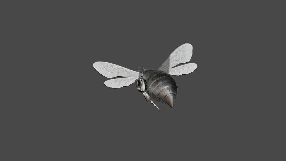 Honeybee7.jpg