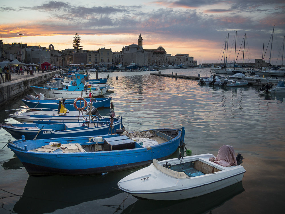 Fishing Fleet, Trani, Italy, 2015
