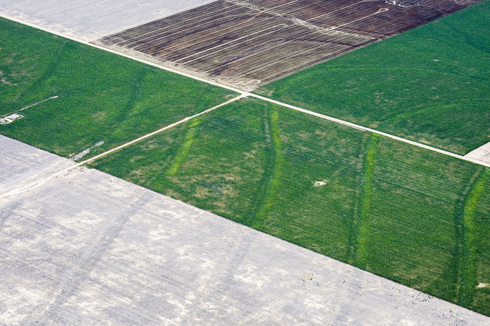 August 18, 2014 (Fallow Fields, Fort Morgan, CO)