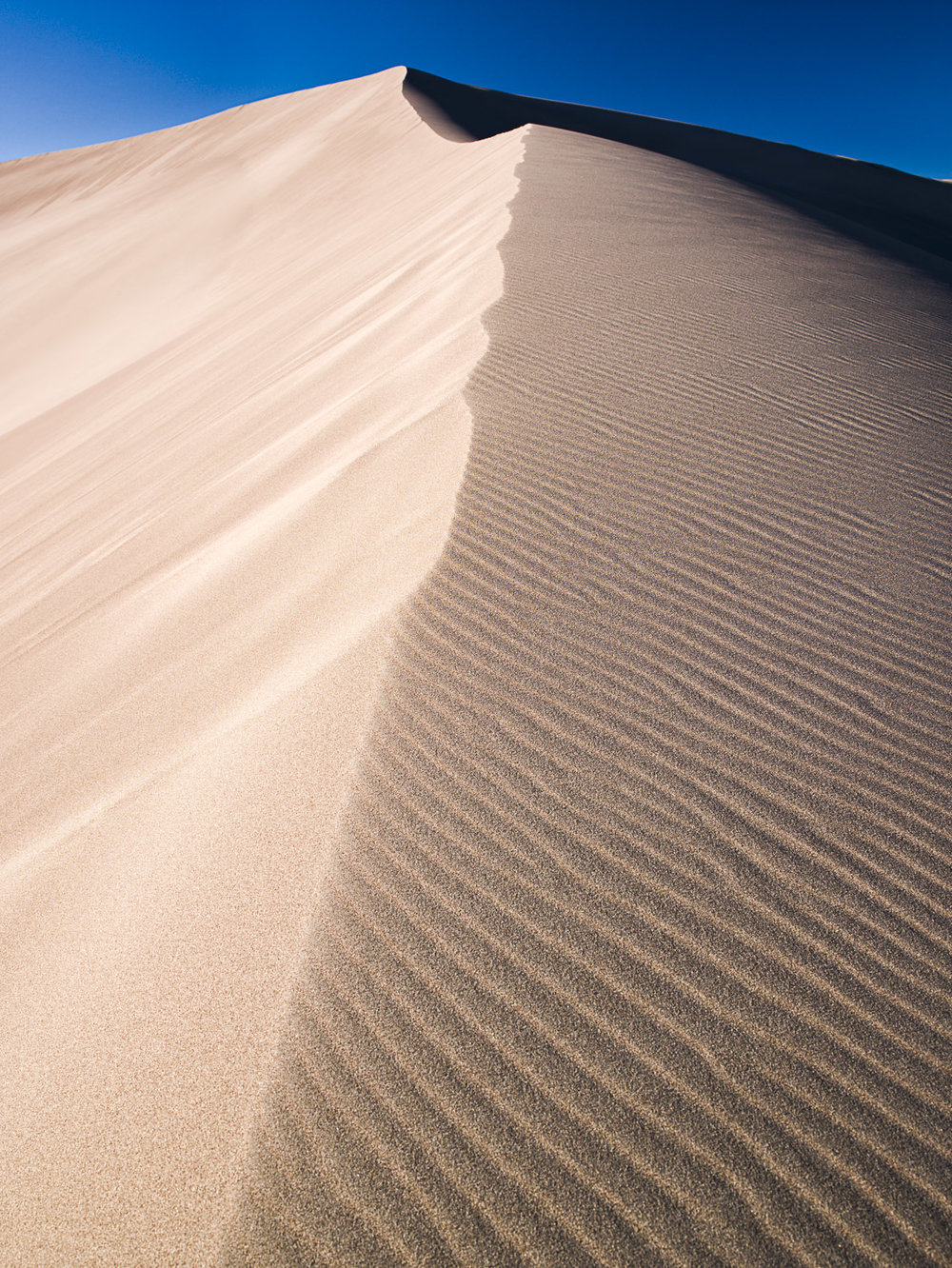 Dune, Great Sand Dunes NP, CO, 2007