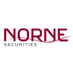 Logo Norne kvadrat.png