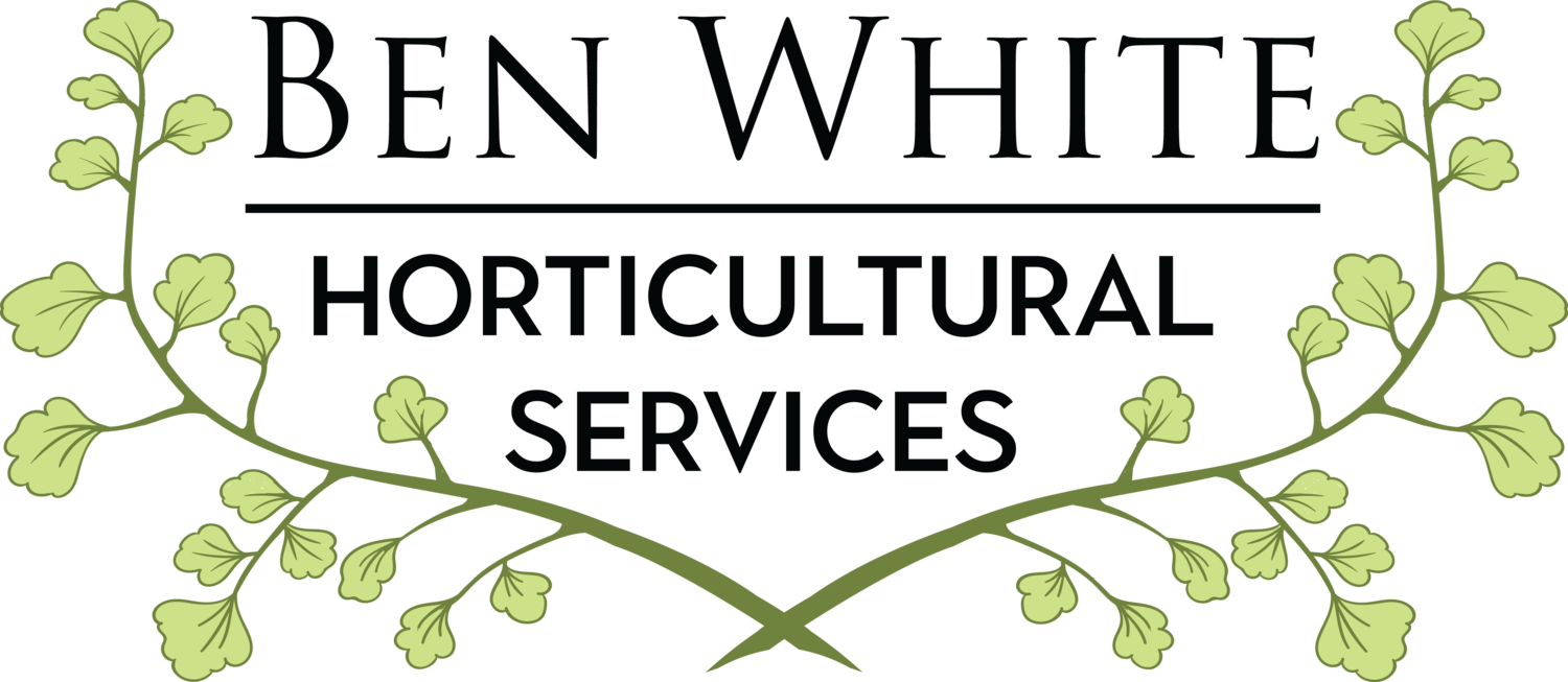 Qualified Horticulturist Melbourne - Ben White Horticultural Services