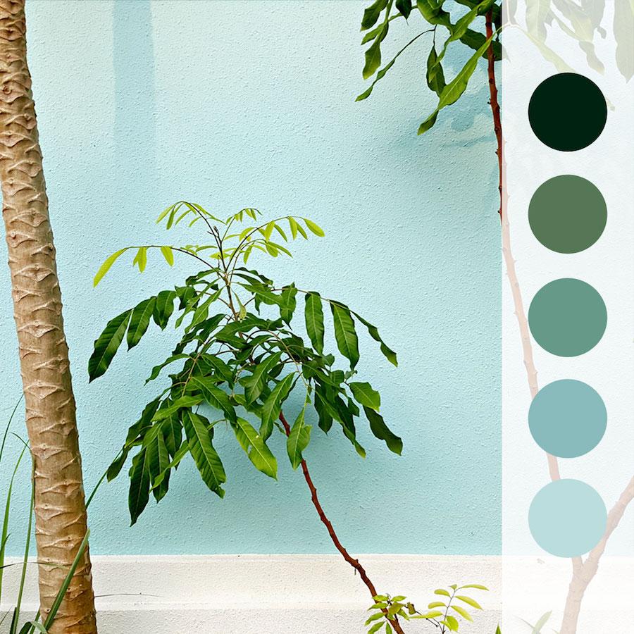 0525_Happy House Plants.jpg