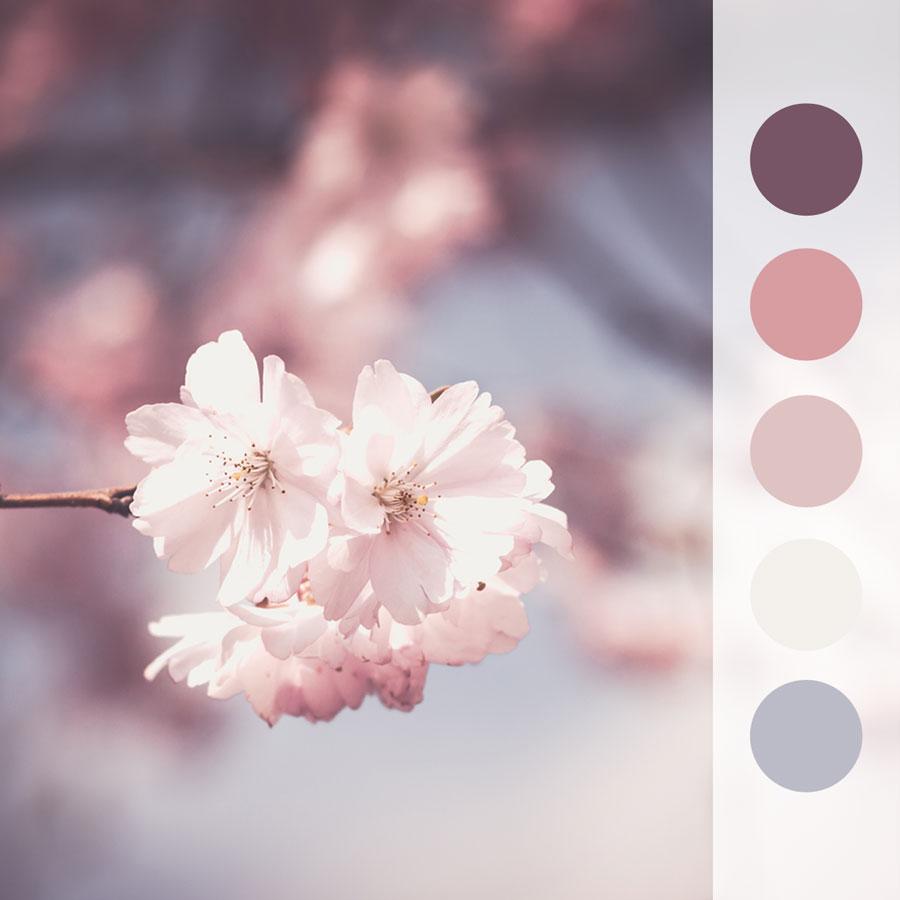 0413_Pretty-in-Pink.jpg